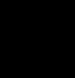 L-aspartic-acid-2D-skeletal